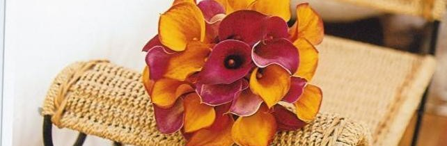 orange & red callas