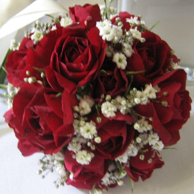 Posts by ingrid florabunda flowers page 2 - Posts By Ingrid Florabunda Flowers Page 2
