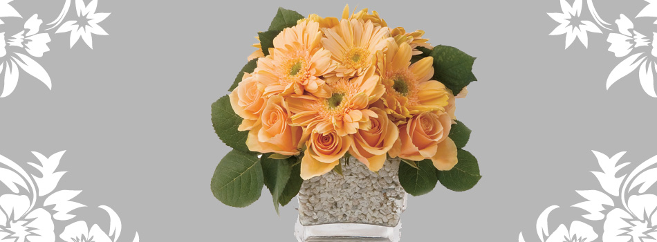 Florabunda Flowers - Everyday flowers delivered to your door