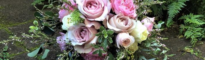 Wasn't it a wonderful wedding weekend especially for Leah & Elliott at Luke's Bluff,…