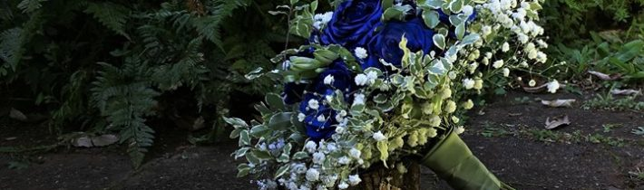 Royal blue roses at Cedar Creek Estate for Freya and Adam who shared their…