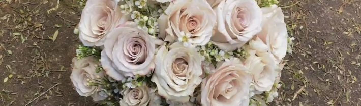 Love the subtle touch of the latte colour in these 'quicksand' roses we used…